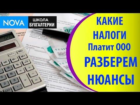 Какие налоги платит ООО. Разберём нюансы какие налоги платит ООО!