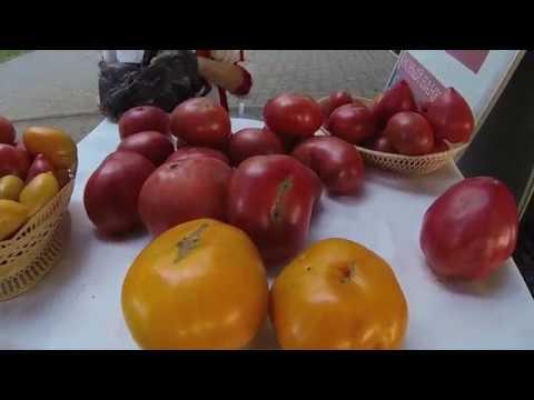 Стихийный рынок в  Энгельсе