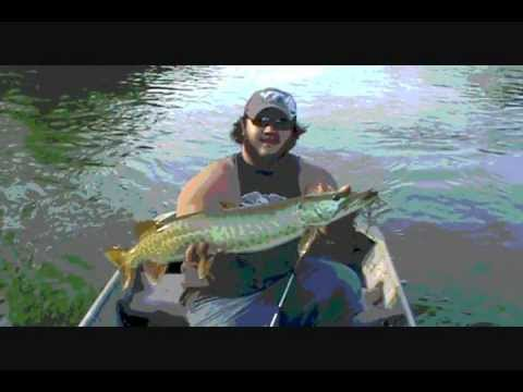 Musky fishing the south fork of the shenandoah river youtube for Where to buy fishing license near me