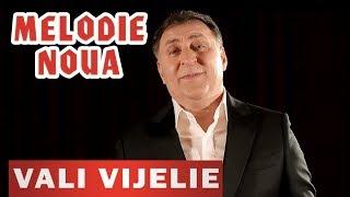 Vali Vijelie si Stelu Pandelescu - Sotia mea frumoasa (Originala 2019)