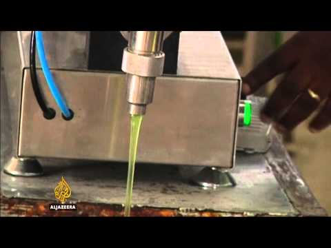 Nigerian start-up eyes green business with new biofuel