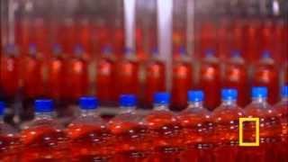 the magic mass production of Plastic bottles