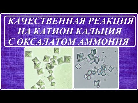 КАЧЕСТВЕННАЯ РЕАКЦИЯ НА КАТИОН КАЛЬЦИЯ С ОКСАЛАТОМ АММОНИЯ