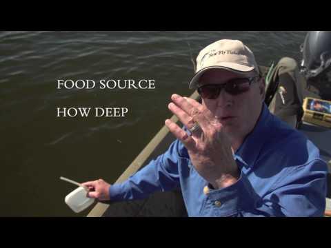 Phil Rowley On Fishing A New Lake   Medicine Hat Alberta