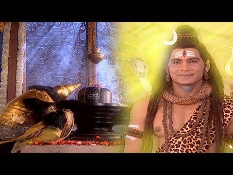 रीछ पति अपनी प्राण क्यों त्याग करना चाहा ,भगवान शिव ने  दर्शन देकर क्या कहा - Jai Jai Bajrangbali