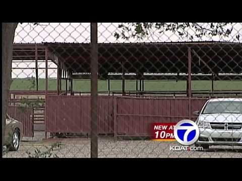 Horse slaughterhouse will bring jobs, GM says