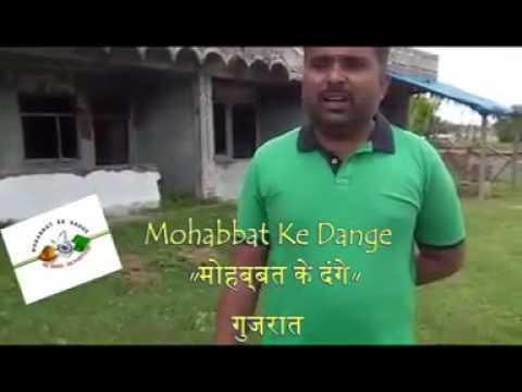 Gujarat. Mohabbat ke dange. The riots of love.