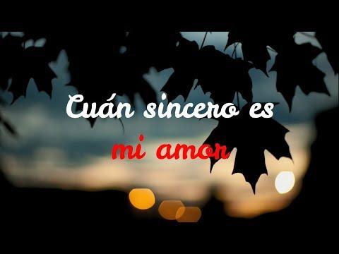 Because I Love You - Stevie B (Subtítulos En Español).