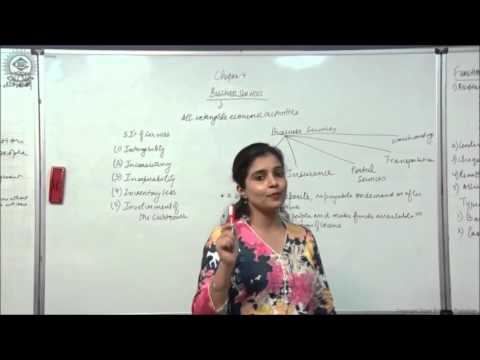 Introduction and 5 I's of Services Cl XI Bussiness Studies by Ruby Singh