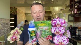 кАК ПОЛИВАТЬ ОРХИДЕЮ чтобы не сгноить корни орхидеи после покупки / АНОНС КОНКУРСОВ в ОРХОМАНИИ