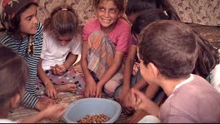 Turkey: Taking child labour out of hazelnut harvesting