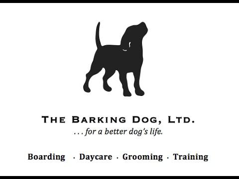 The Barking Dog, Ltd.
