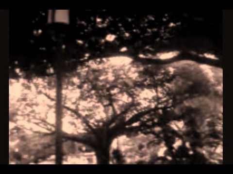 En Cambio No de Laura Pausini cover instrumental por Javish M. Viera