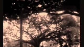 Download En Cambio No de Laura Pausini (cover instrumental) por Javish M. Viera MP3 song and Music Video