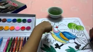 Bé Tập Tô màu Bộ Dụng Cụ Tô Màu cho bé Bộ màu và tranh trắng để bé tô màu