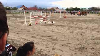 Конный спорт конкур