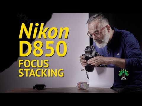 Nikon D850 Focus Stacking Explained - Viilage Review