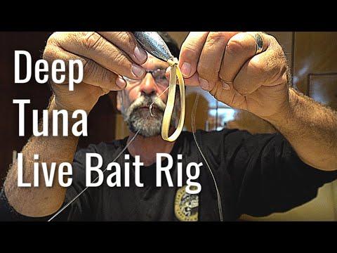 Deep Tuna Live Bait Rig - Rubber Band