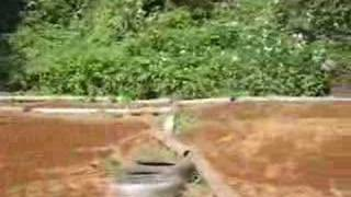 友人H氏のグラベルハウンドの練習走行動画です。相模湖ピクニックラン...
