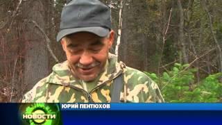 видео: спецпроект Браконьеры на р. Енисей Красноярск