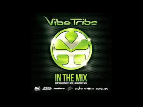 Vibe Tribe - In The Mix Vol.1