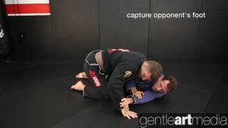 Eduardo Telles: Turtle guard sweep