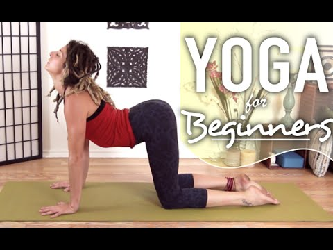 Morning Yoga - Beginners Energizing Yoga Workout