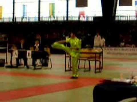 French Wushu Championship 2007