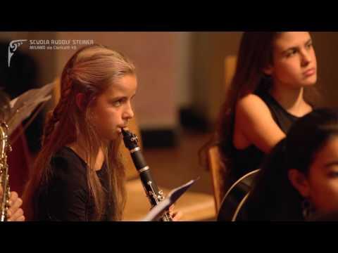La musica e le attività orchestrali della Scuola Steiner Milano