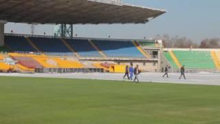Реновация газона Центрального стадиона