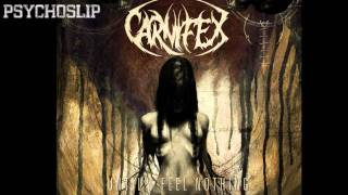Watch Carnifex Never Forgive Me video