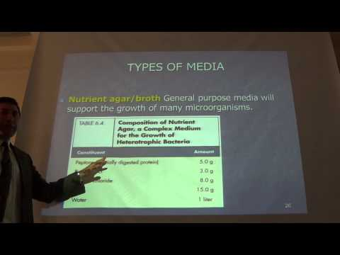 Microbiology - Bacterial Growth and Cultivation Part 2