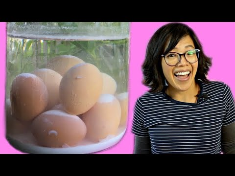 perfect-eggs-with-no-refrigeration?-|-lime-water-eggs---1800s-egg-preservation