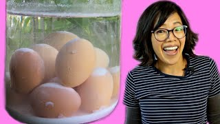 PERFECT Eggs With NO Refrigeration?  | Lime Water Eggs - 1800s Egg Preservation