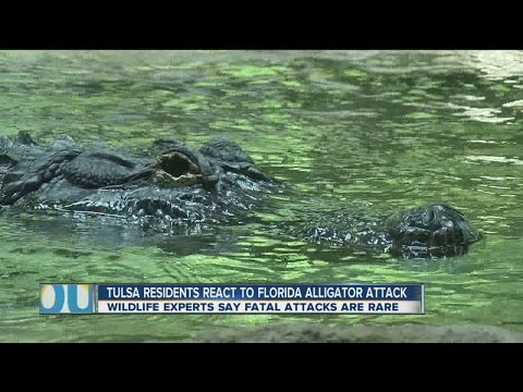 Tulsa Residents React To Florida Alligator Attack