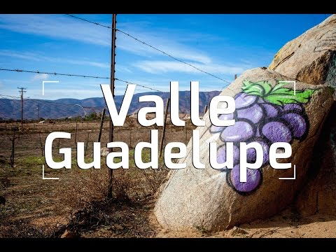 Valle de Guadalupe: Mexico