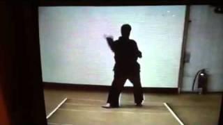 Seirenkai Karate Kata Pinan Nidan