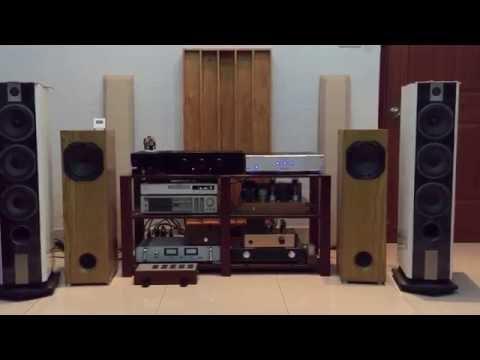 Musical Fidelity A1000 + DAC Musical Fidelity Tri-Vista 21