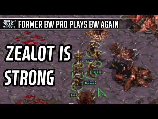 Zealot rush is still strong l StarCraft: Brood War l Crank