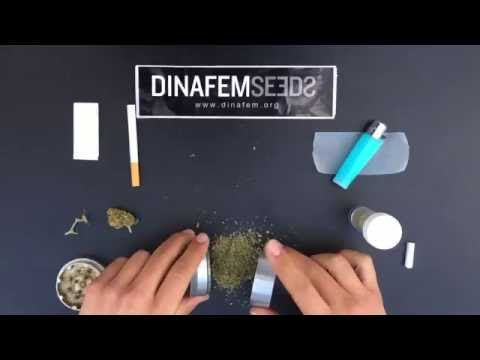 HOW TO ROLL A BETTER JOINT