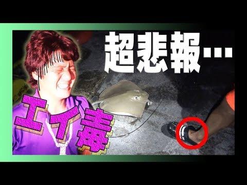 エイの棘に刺される【武c大物を狙う旅5話】