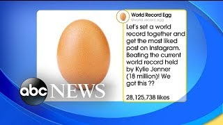 World record egg breaks the internet