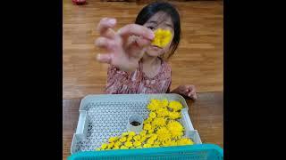 * 꽃차 만들기 (직접 만든 꽃차)~♡    Flowe…