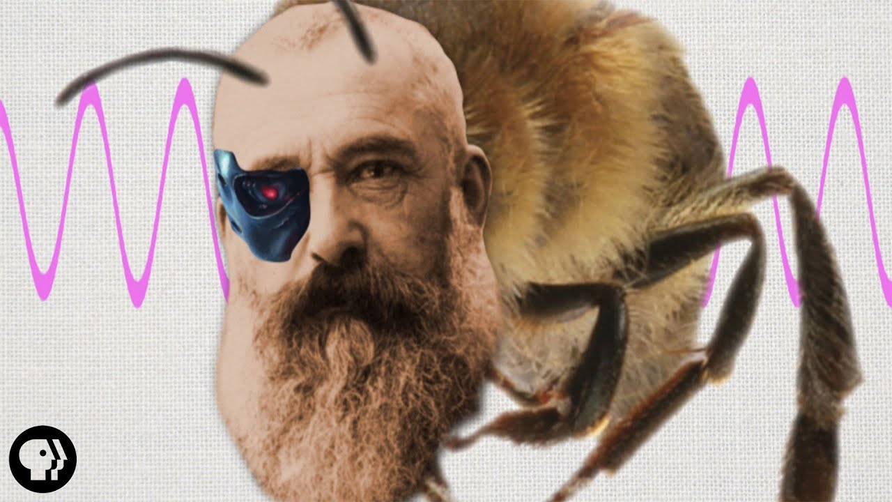 Claude Monet's Ultraviolet Eye | It's Okay to be Smart | PBS Digital Studios