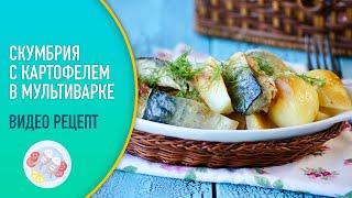 Скумбрия с картошкои в мультиварке видео рецепт Готовим картошку с рыбой в мультиварке