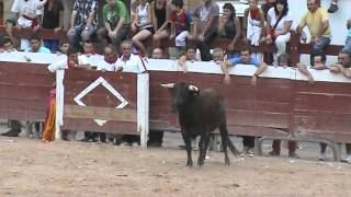 Entzierroak 2012   Encierros 2012
