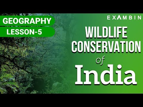 Wildlife conservation in india National Parks , Wildlife Sanctuary