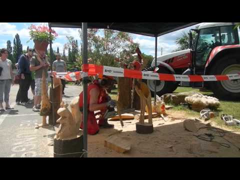 Traditional German art form: chainsaw sculpture. June 2014