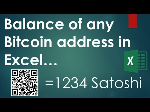 Balance of any Bitcoin address into Excel (Macro included)