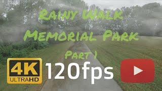 4k 120hz/fps video test | 2x speed for 120fps rainy day in memorial park part 1